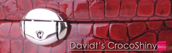 Davidt's CrocoShiny